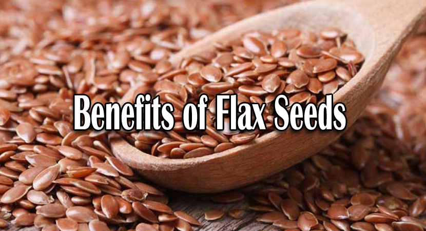 Benefits of Flax Seeds